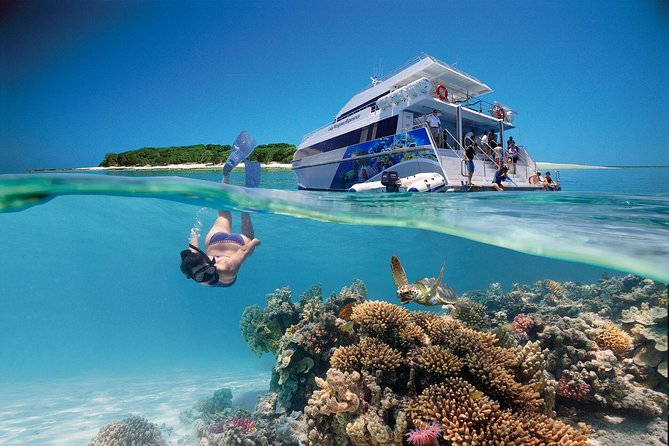 3-Day Southern Great Barrier Reef Tour Including Lady Musgrave Island - Accommodation Brisbane