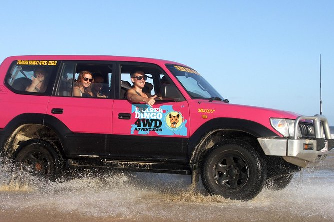2-Day Fraser Island 4WD Tag-Along Tour at Beach House from Hervey Bay - Accommodation Brisbane