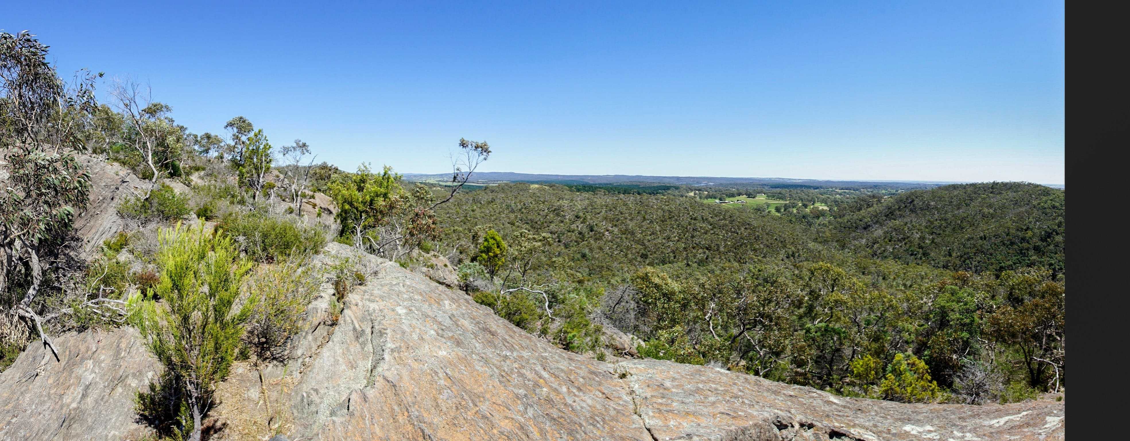 Hale Conservation Park - Accommodation Brisbane