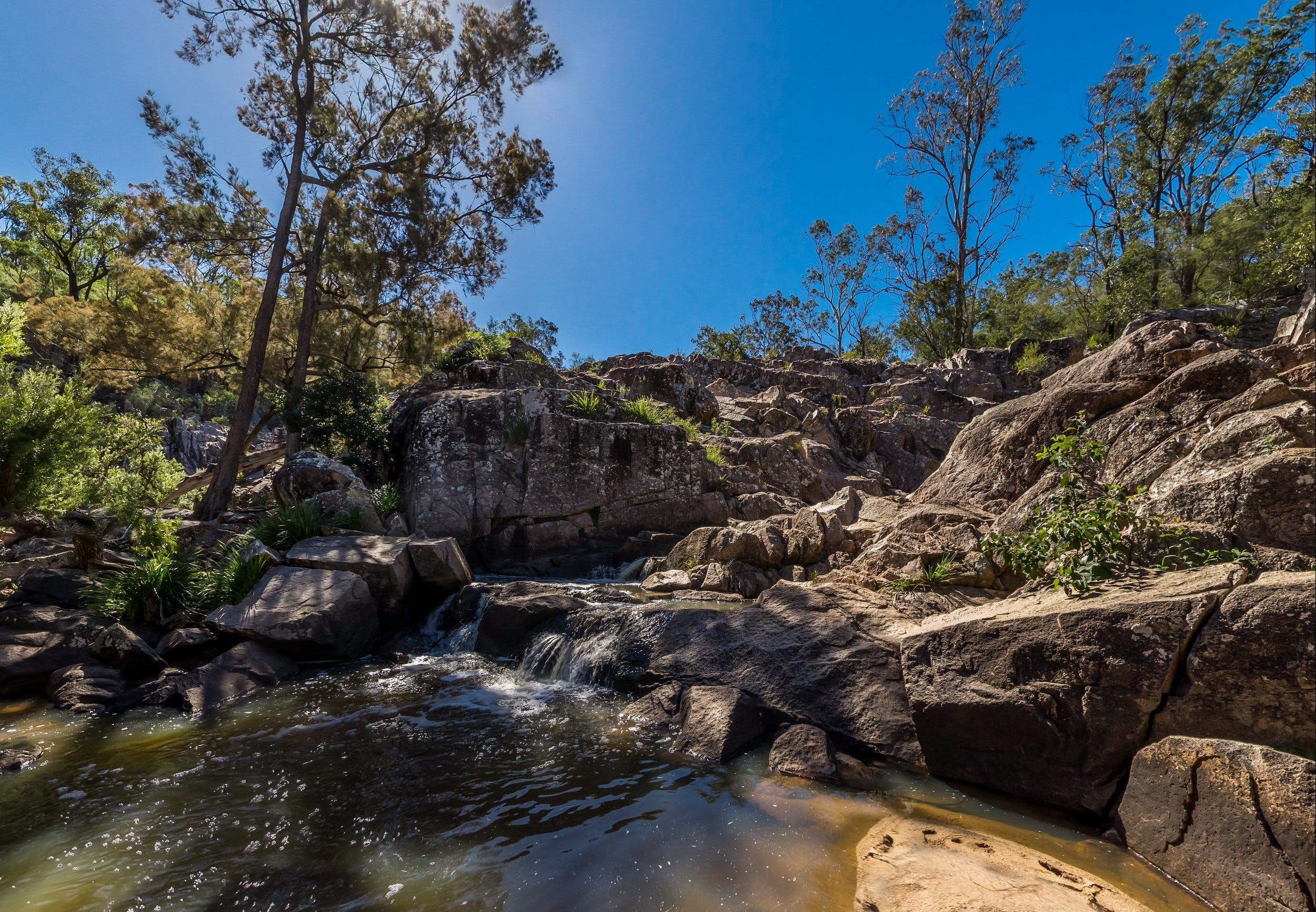 Crows Nest Falls - Accommodation Brisbane