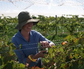 Kingsdale Wines - Accommodation Brisbane