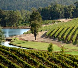 Brookhampton Estate Vineyard - Accommodation Brisbane