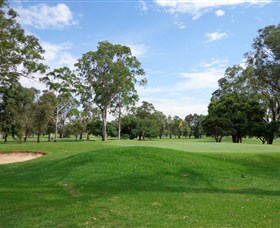 Singleton Golf Club - Accommodation Brisbane