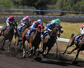 Alice Springs Turf Club - Accommodation Brisbane