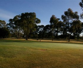 Winchelsea Golf Club - Accommodation Brisbane
