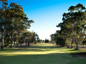 Loxton Golf Club - Accommodation Brisbane
