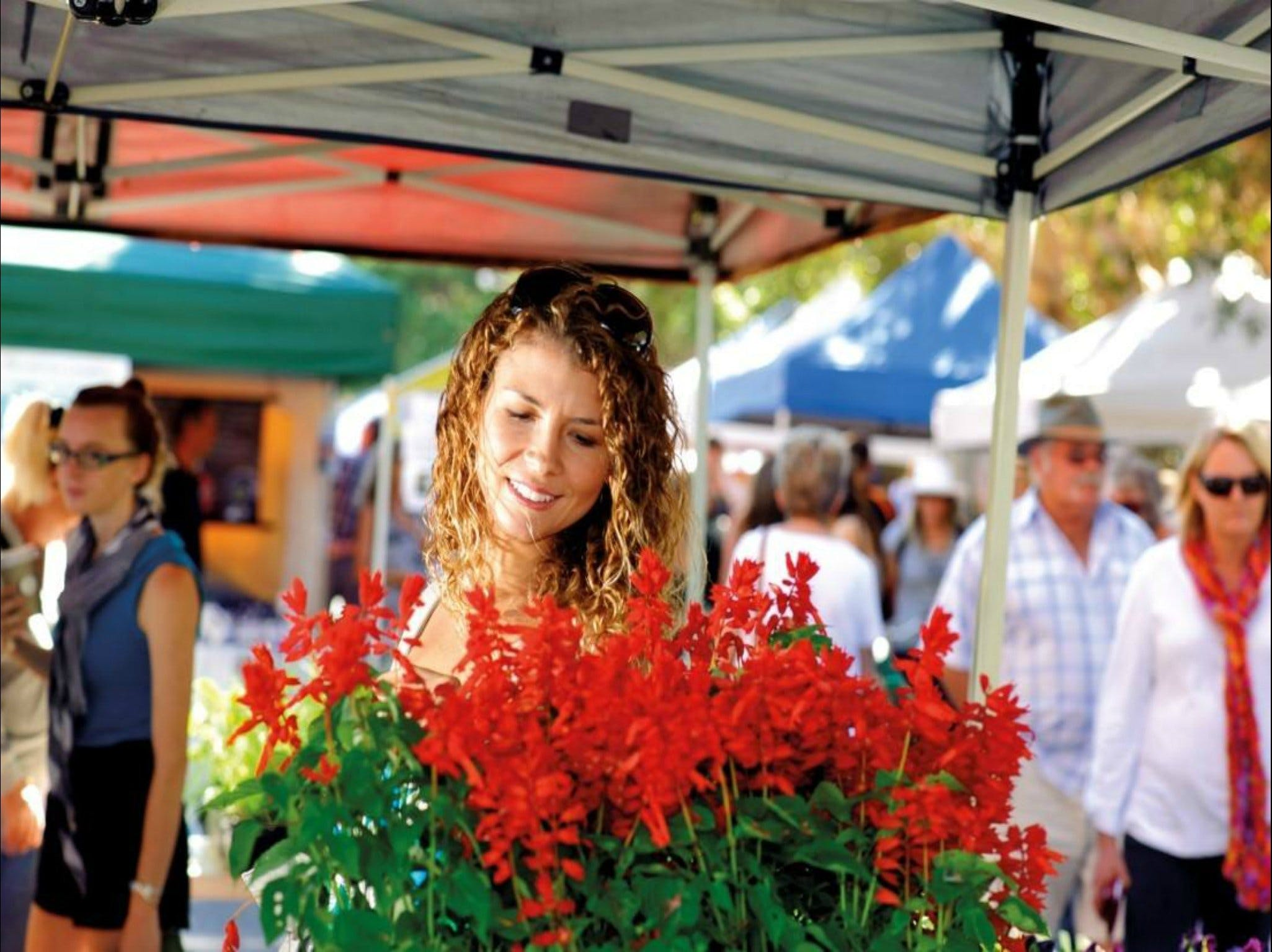 Ballina Missingham Farmers Market - Accommodation Brisbane