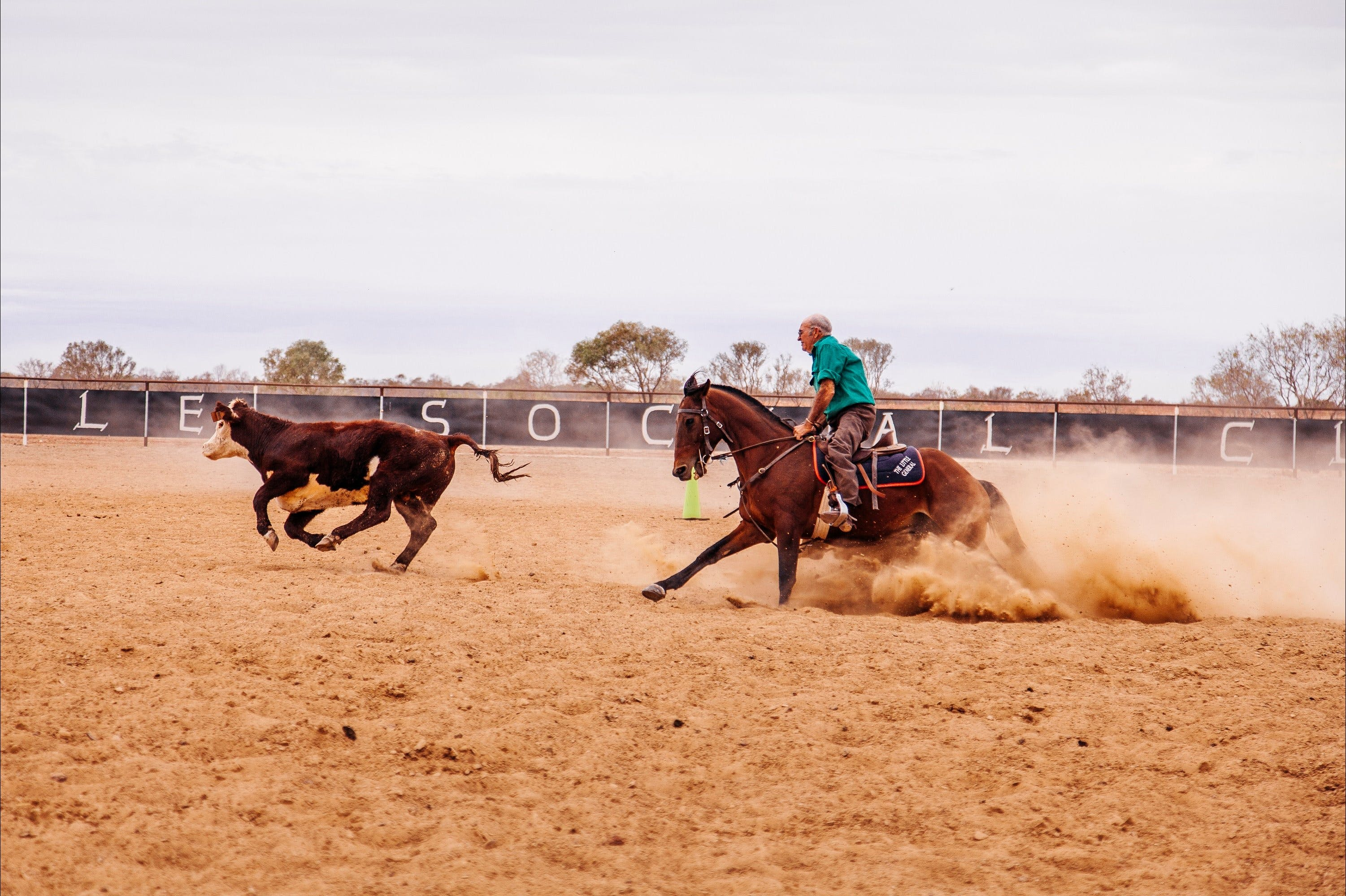 Birdsville Campdraft  Rodeo and Bronco Branding - Accommodation Brisbane