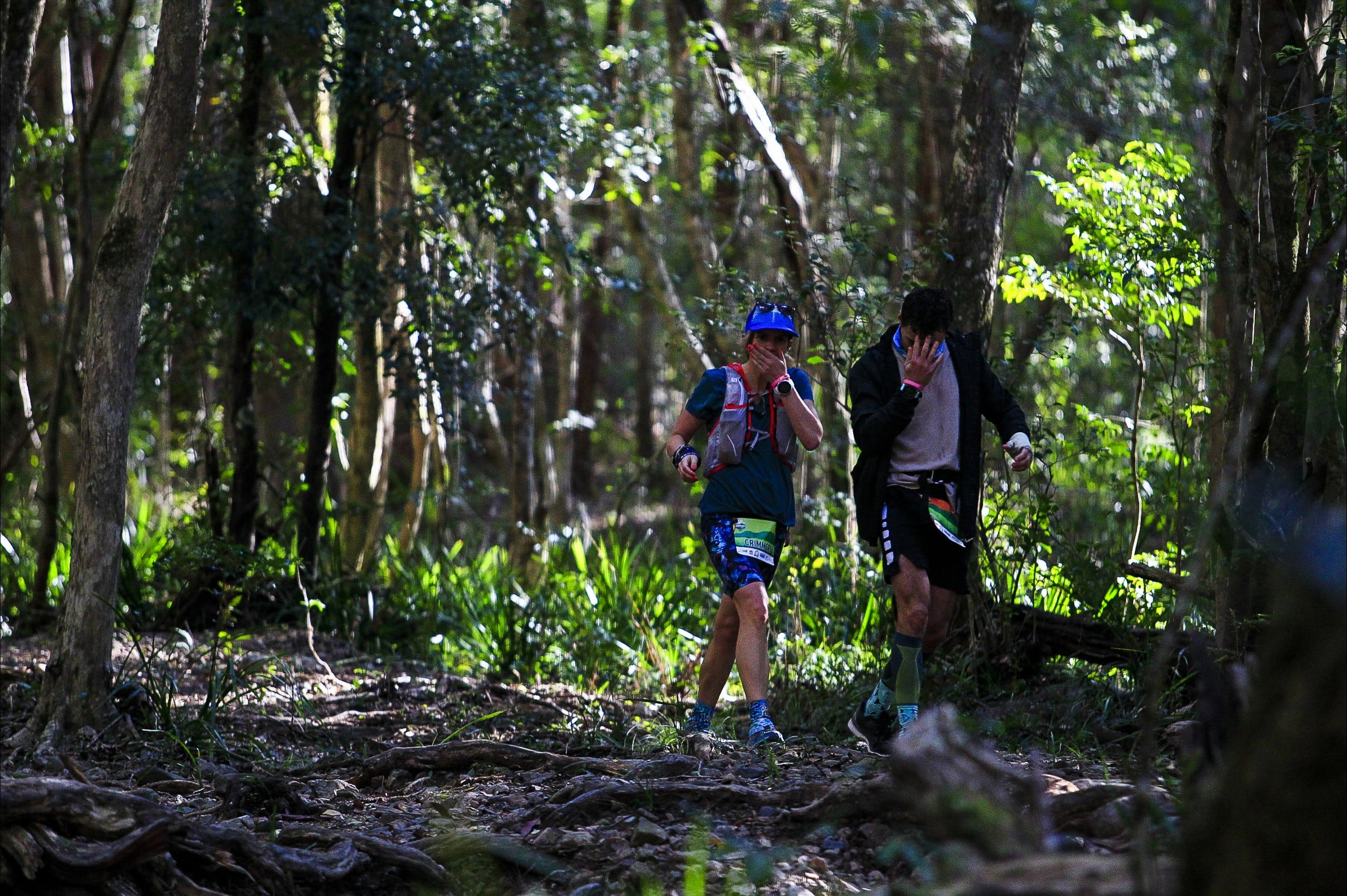 Elephant Trail Race - Accommodation Brisbane