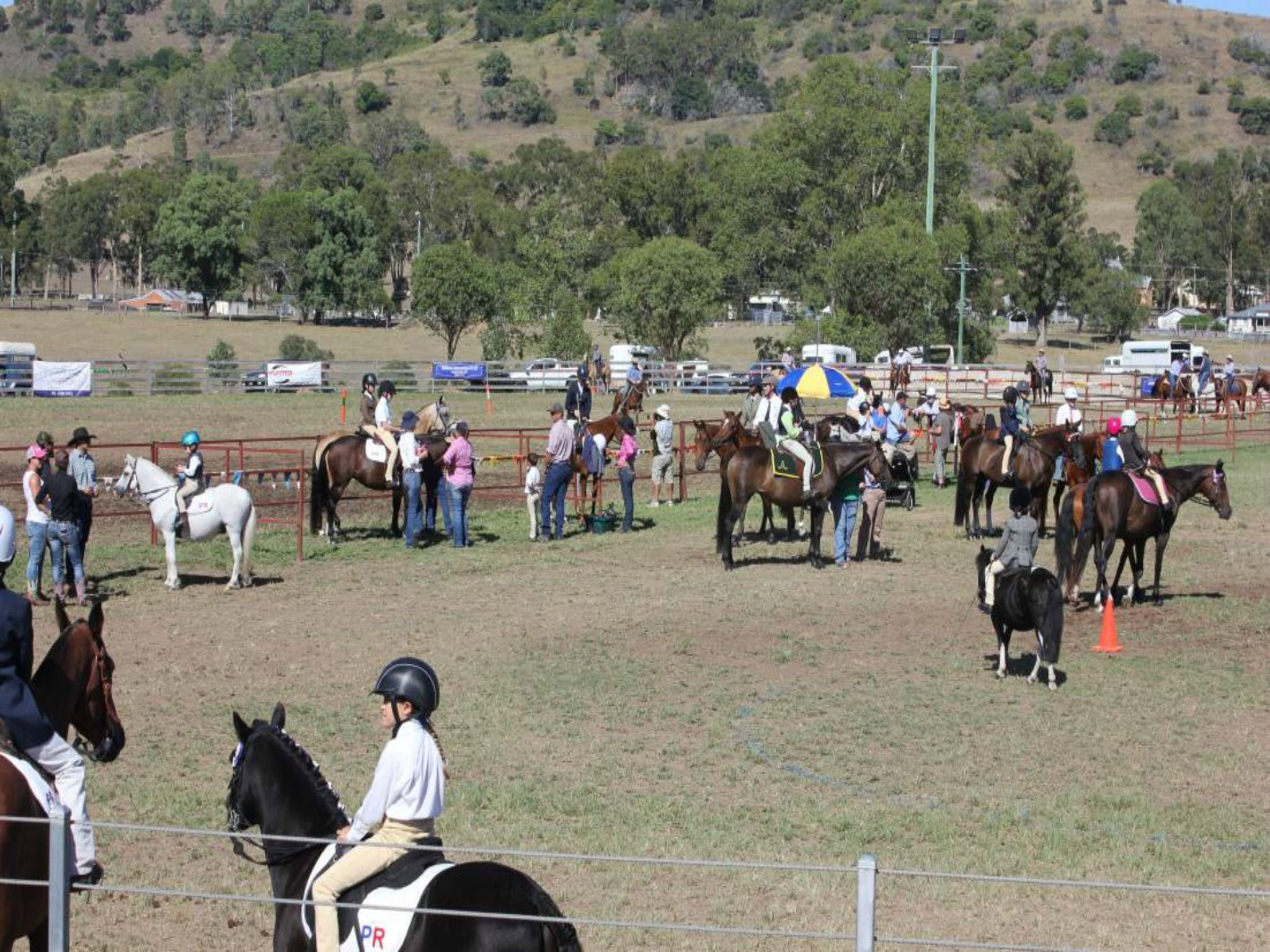 Gresford Agricultural Show - Accommodation Brisbane