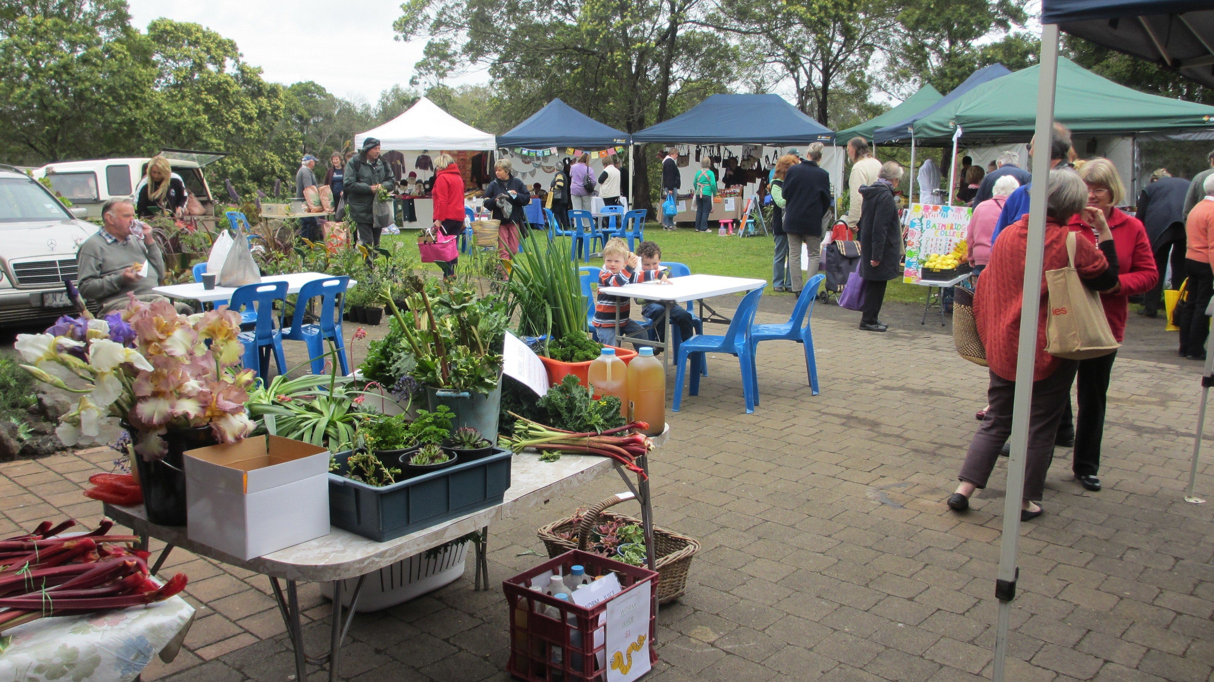 Hamilton HIRL Farmers and Craft Market - Accommodation Brisbane