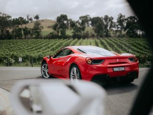 The Prancing Horse Supercar Drive Day Experience - Melbourne Yarra Valley - Accommodation Brisbane