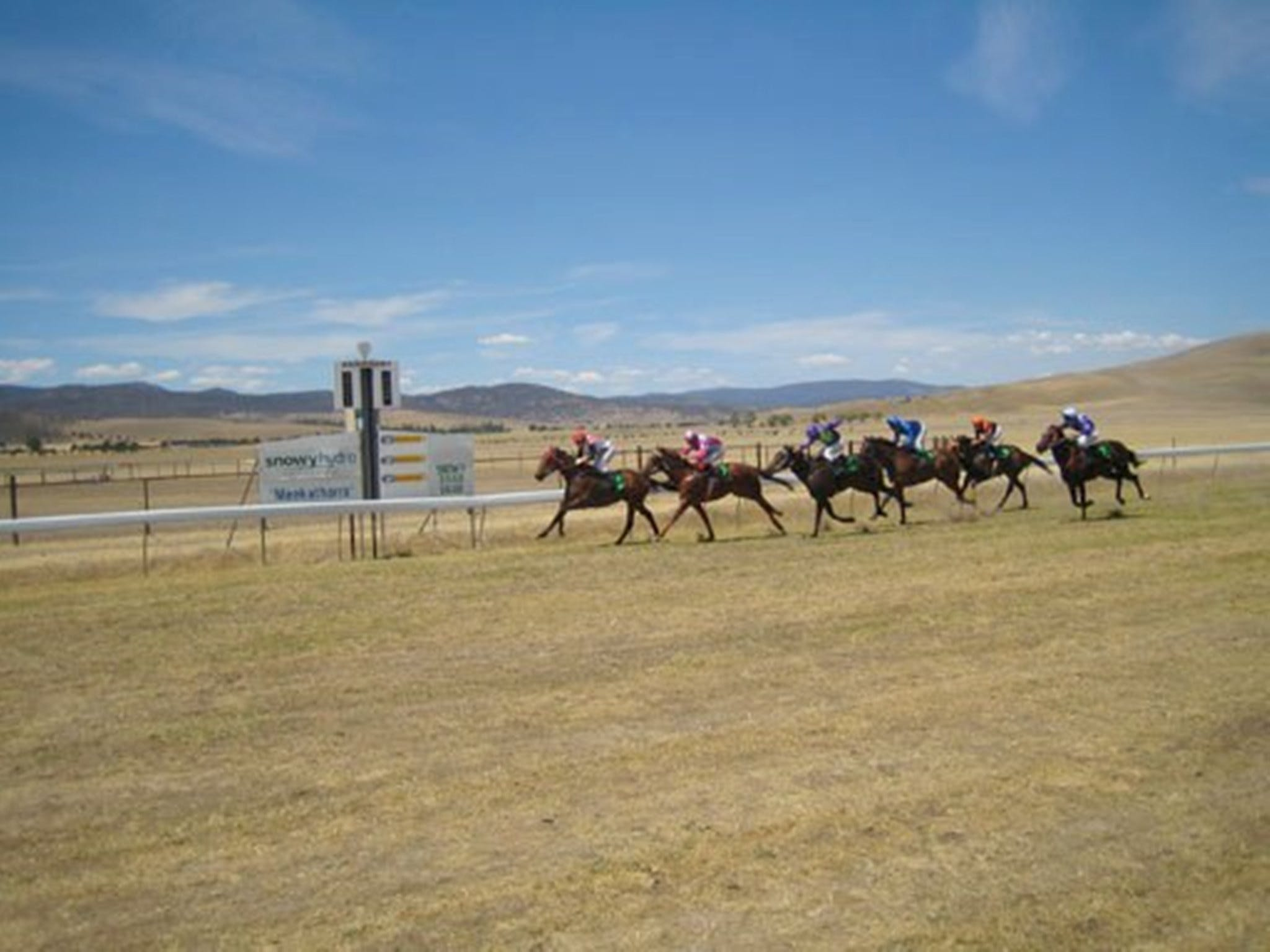Adaminaby Cup Race Day - Accommodation Brisbane