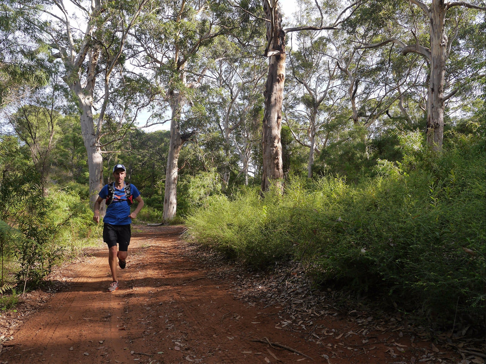 Margaret River Ultra Marathon - Accommodation Brisbane