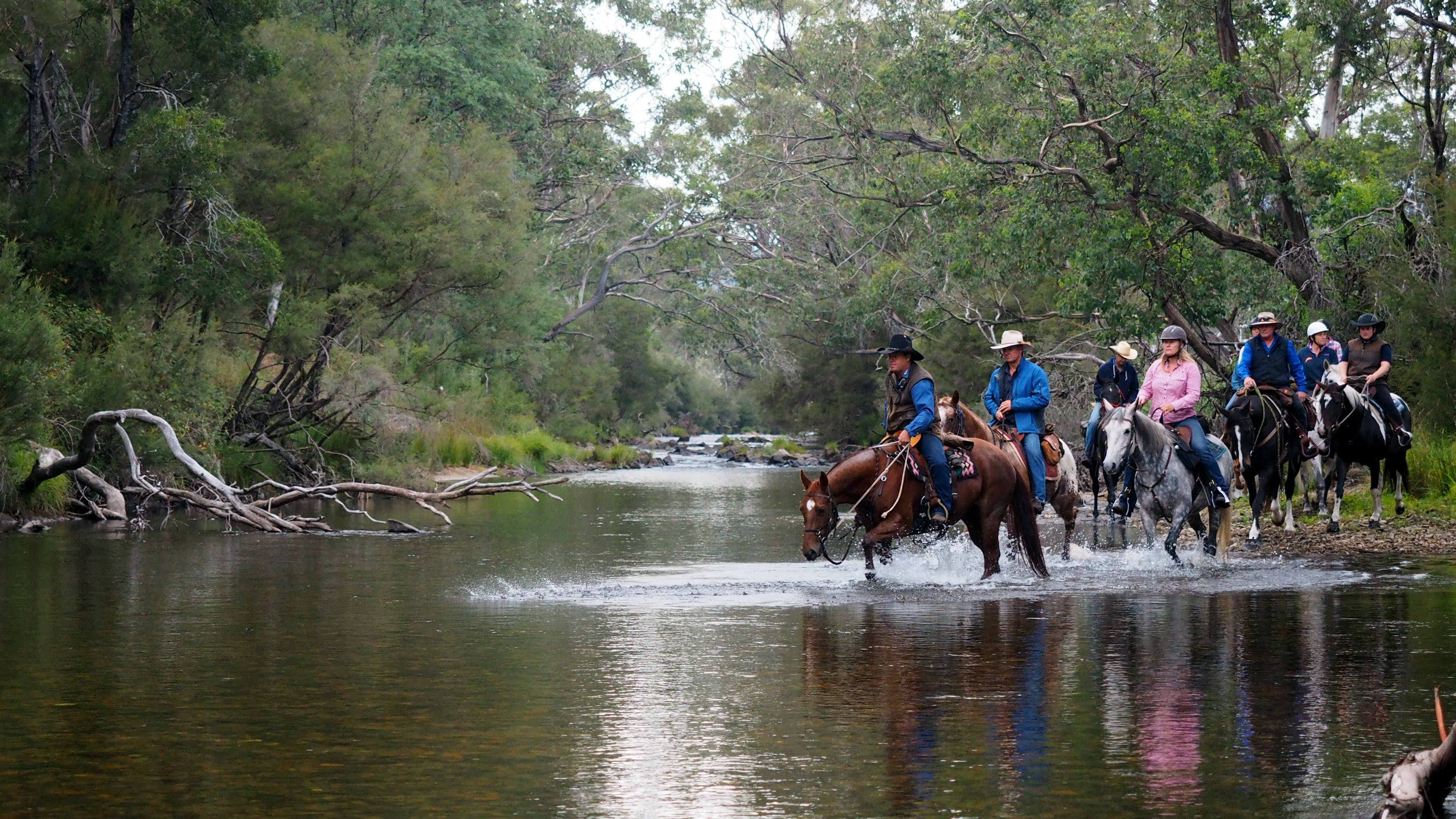 The Man From Snowy River Bush Festival - Accommodation Brisbane