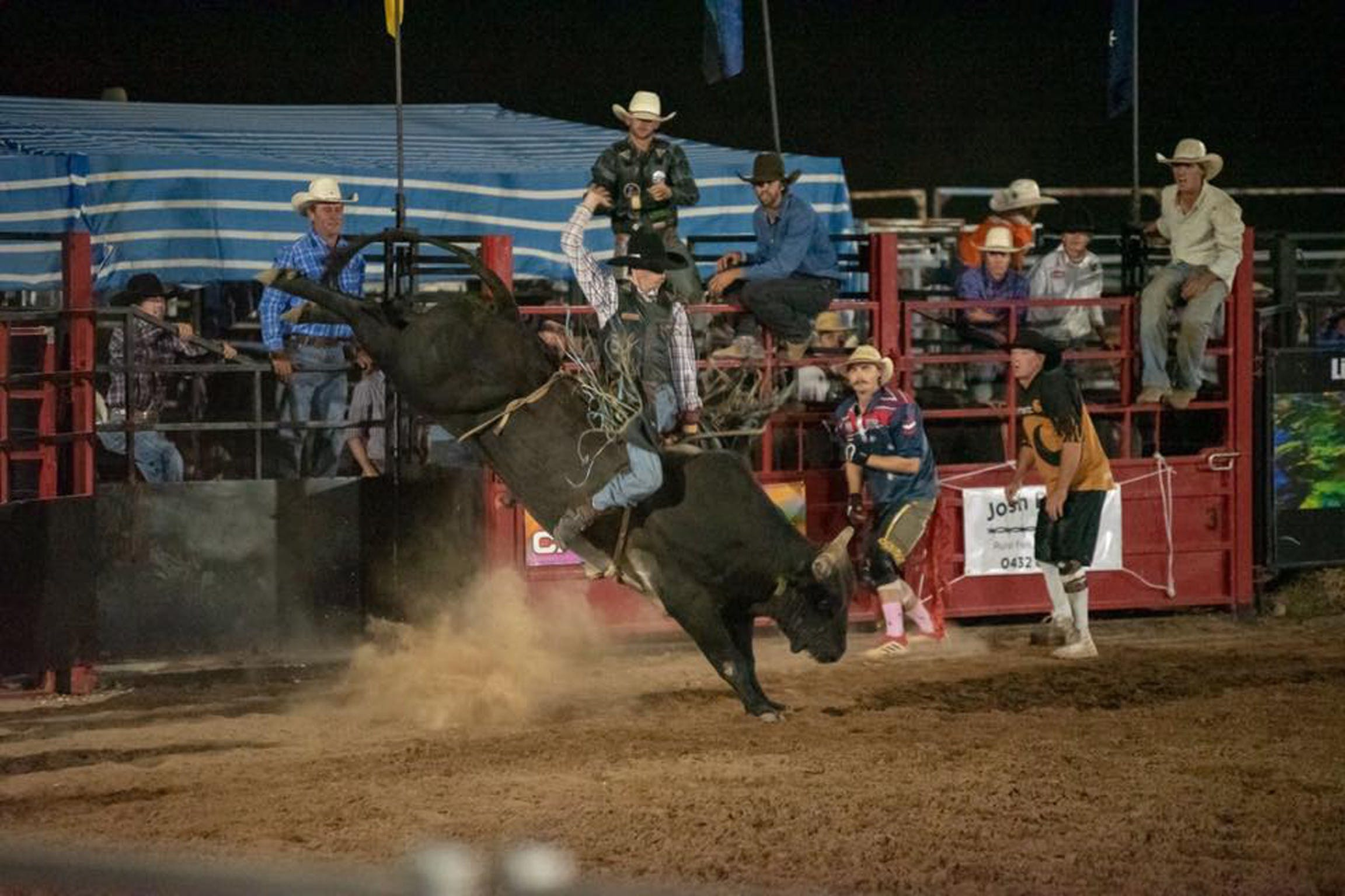 Black Opal Bull and Bronc Ride - Accommodation Brisbane