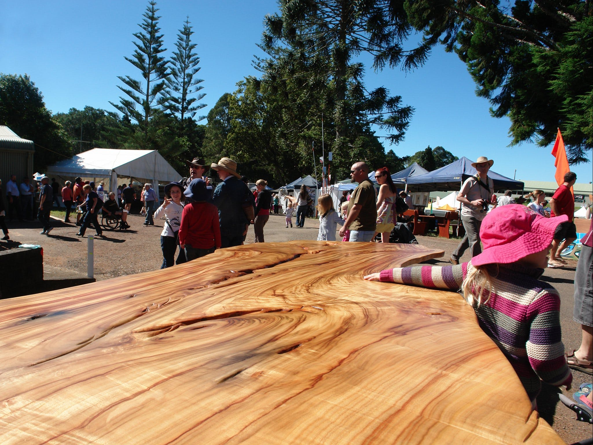 Maleny Wood Expo From Seed to Fine Furniture - Accommodation Brisbane