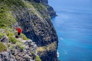 Seven Peaks Walk at Pinetrees Lord Howe Island - Accommodation Brisbane