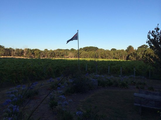 Lazzar Wines - Accommodation Brisbane
