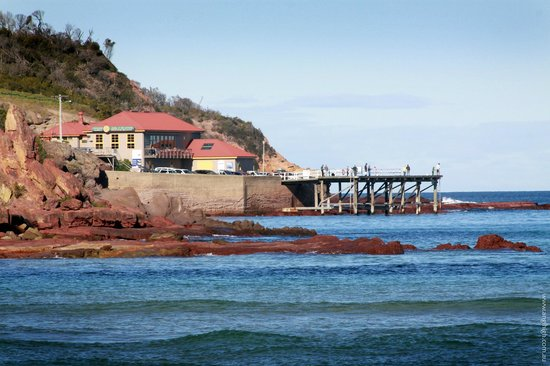 Merimbula Aquarium and Wharf Restaurant - Accommodation Brisbane