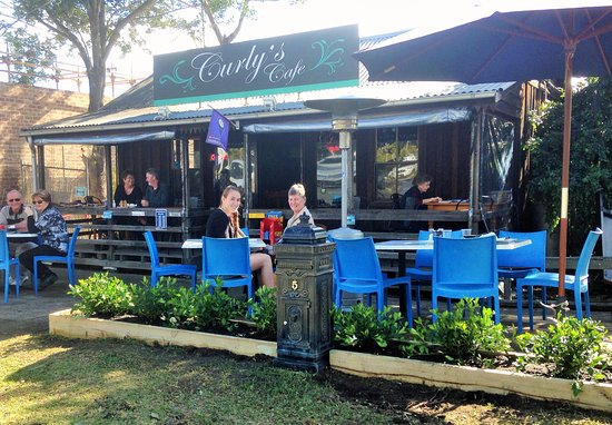 Curly's Cafe - Accommodation Brisbane