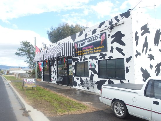 The Cow Shed - Accommodation Brisbane