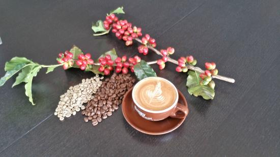Simply Beans Coffee Roasters - Accommodation Brisbane