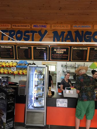 Frosty Mango - Accommodation Brisbane