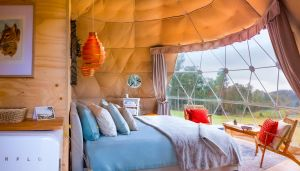 Domescapes in the Vines - Accommodation Brisbane